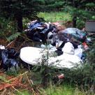 Affald i skov.