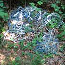Kabler i skoven. Foto IM Thomsen