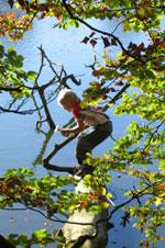 Barn i skov. Foto: Eva Skytte, Dansk Skovforening