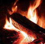 Brænde er Co2 neutralt. Foto: Janne Bavnhøj