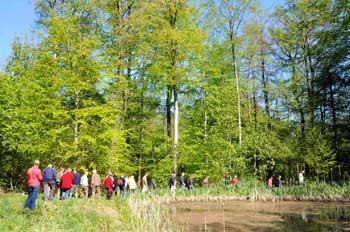 Skovens dag 2011 i kærehave skov