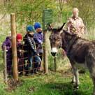 Skovens Dag 2012