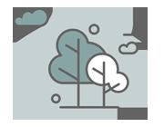 Skovbrug bidrager med 2,0 mia. kr. i BNP-bidrag og har 5.500 beskæftigede.