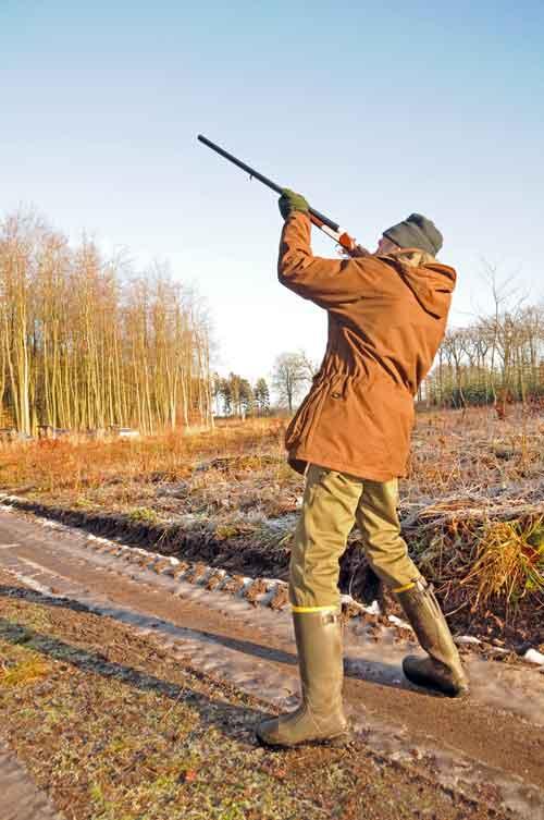 Lej jagt her på siden og læs om godkendte hagl. Jæger skyder.