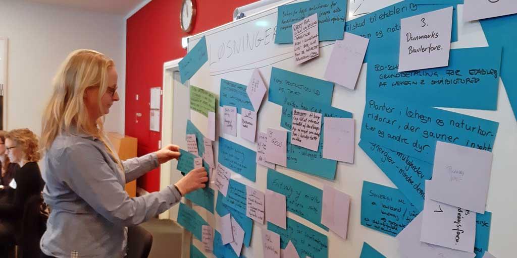 Tanja Olsen pinpointer hvilke elementer, Dansk Skovforening prioriterer i det fremtidige arbejde med CAP.