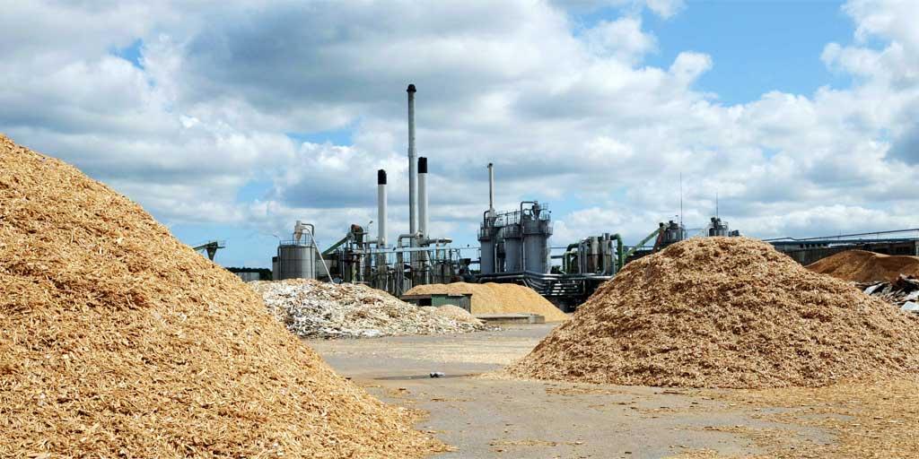 Biomassen har ikke fortrængt sol og vindenergi i energiforsyningen, men derimod store mængder fossile brændstoffer i form af kul.