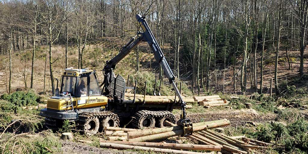 Skovbunden er endelig ved at blive fastere og der er sat gang i forårets skovdriftsaktiviteter.