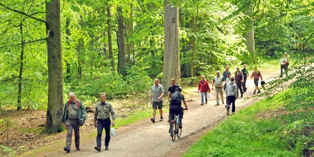 Frilutsliv. Danskerne elsker at komme på skovtur, men mange kender ikke adgangsreglerne.