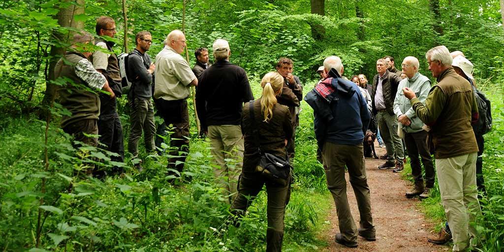 Ekskursion efter møde i Sjællandske Skovkreds den 22. juni 2021.